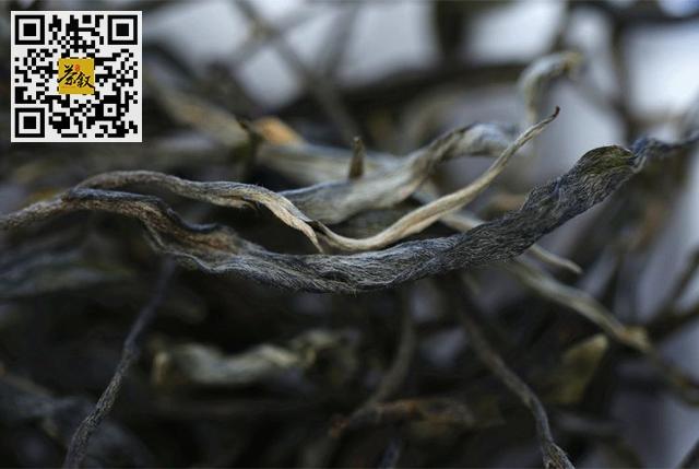 云南普洱茶各大名山头茶叶口感特征大汇集