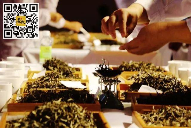 茶叶知识:什么是单株茶?什么是纯料茶?什么是拼配茶?