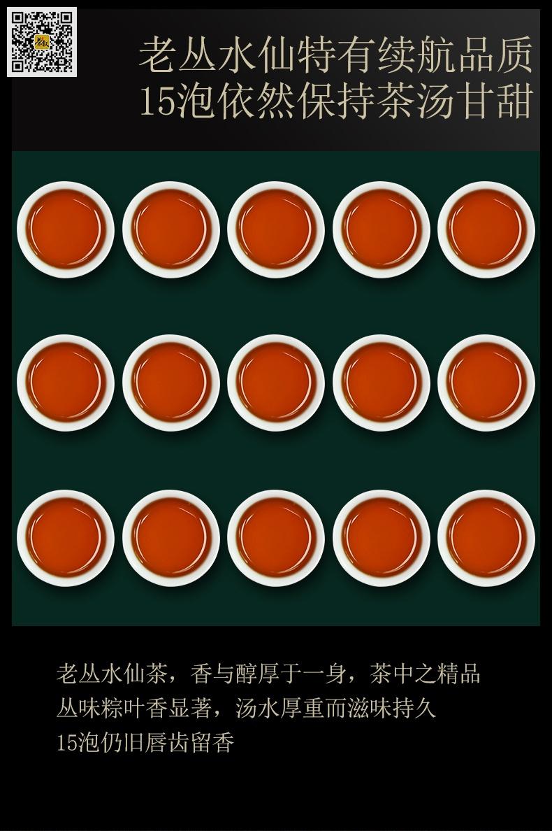 老丛水仙15泡茶汤图