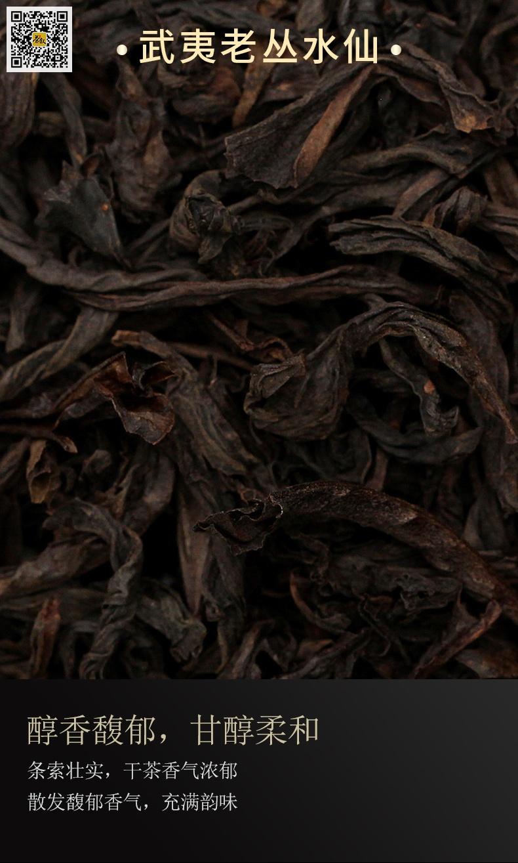 老丛水仙茶干条索图