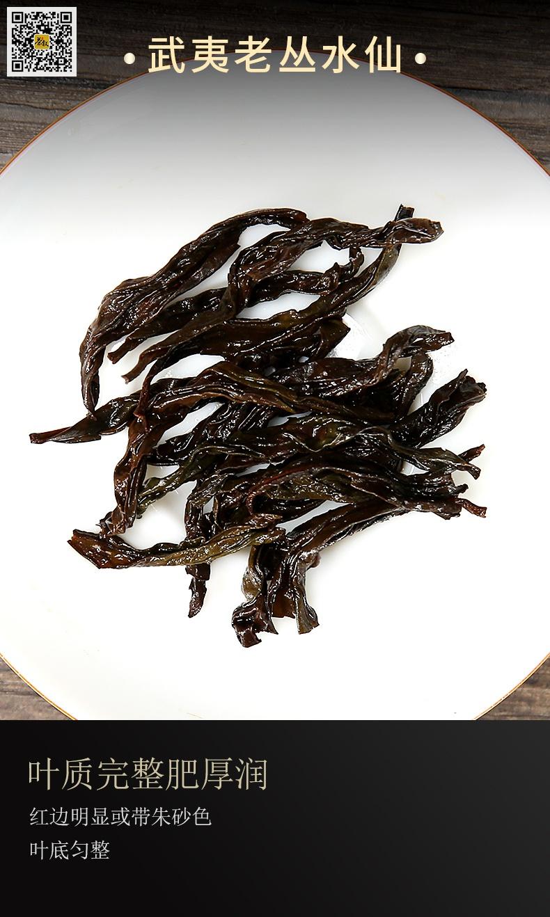老丛水仙叶底茶香图