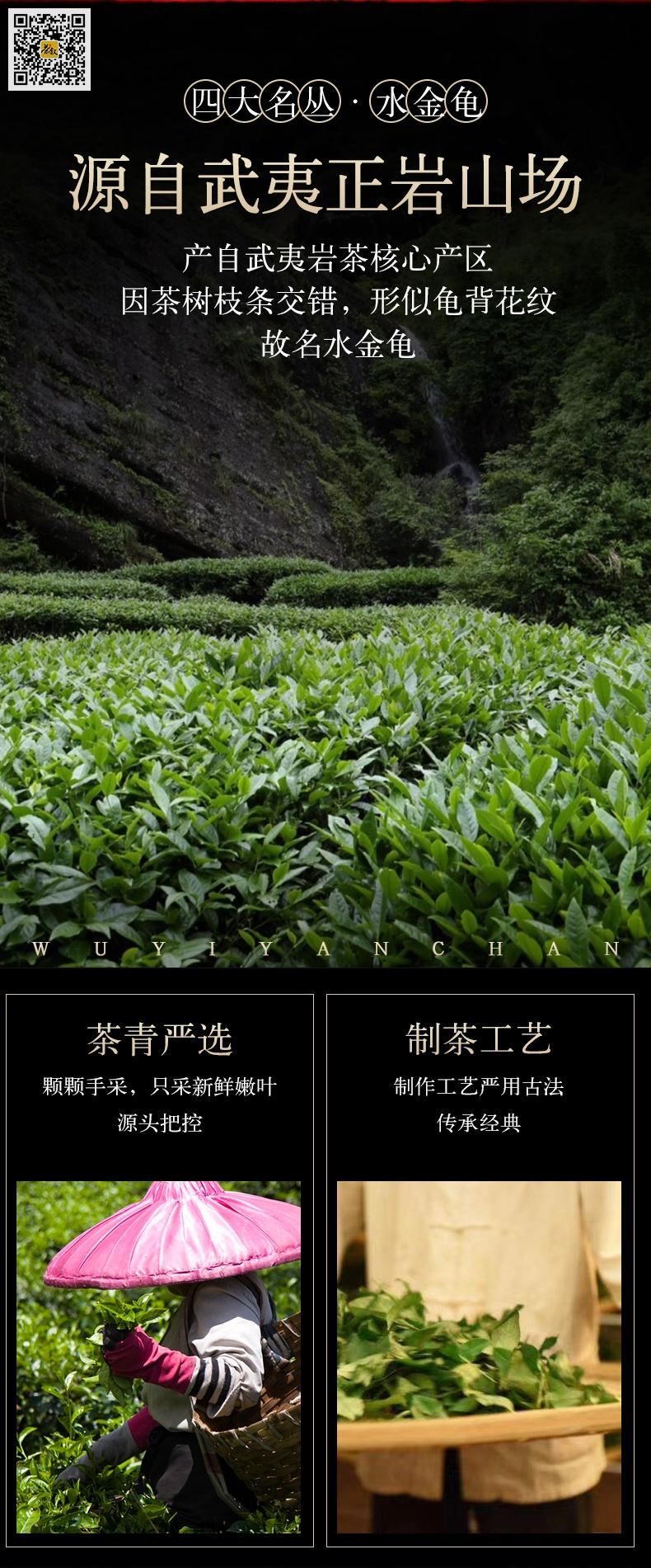 精装水金龟礼品茶-山场介绍图