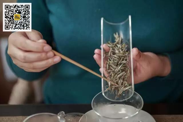 白茶式的爱情表白