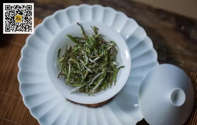 收藏白茶要收藏什么白茶好?白毫银针值得长期收藏吗?