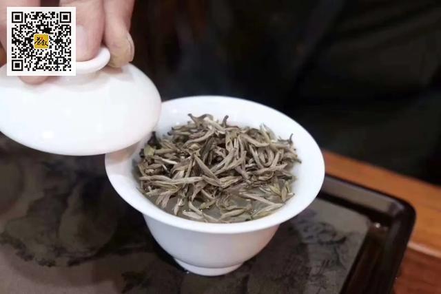 收藏白茶要收藏什么白茶好?
