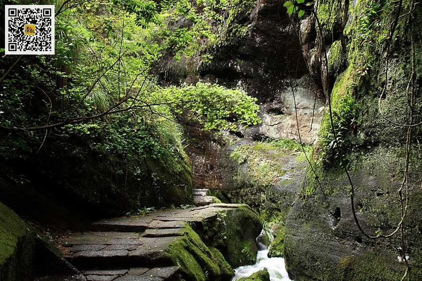 武夷岩茶山场之流香涧