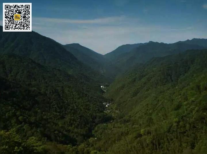 武夷山自然保护区桐木村