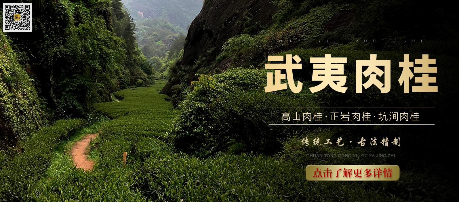武夷肉桂岩茶
