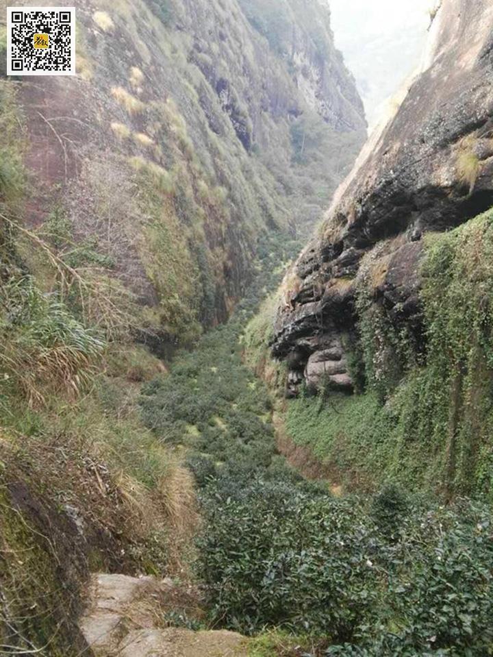 鬼洞山场特征