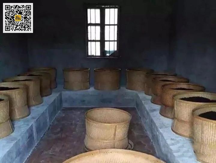 潮州凤凰单丛乌龙茶烘焙