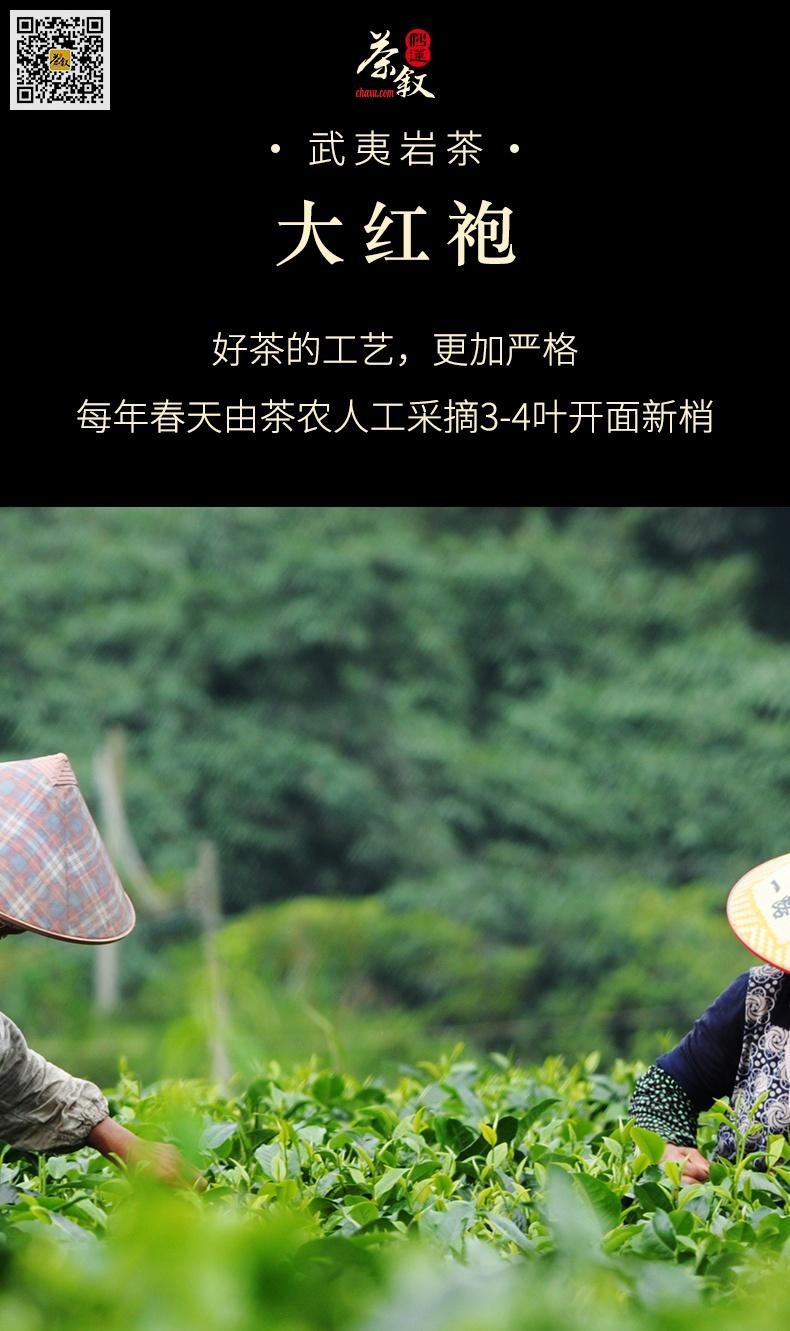 武夷大红袍岩茶工作接待茶每年春天开采