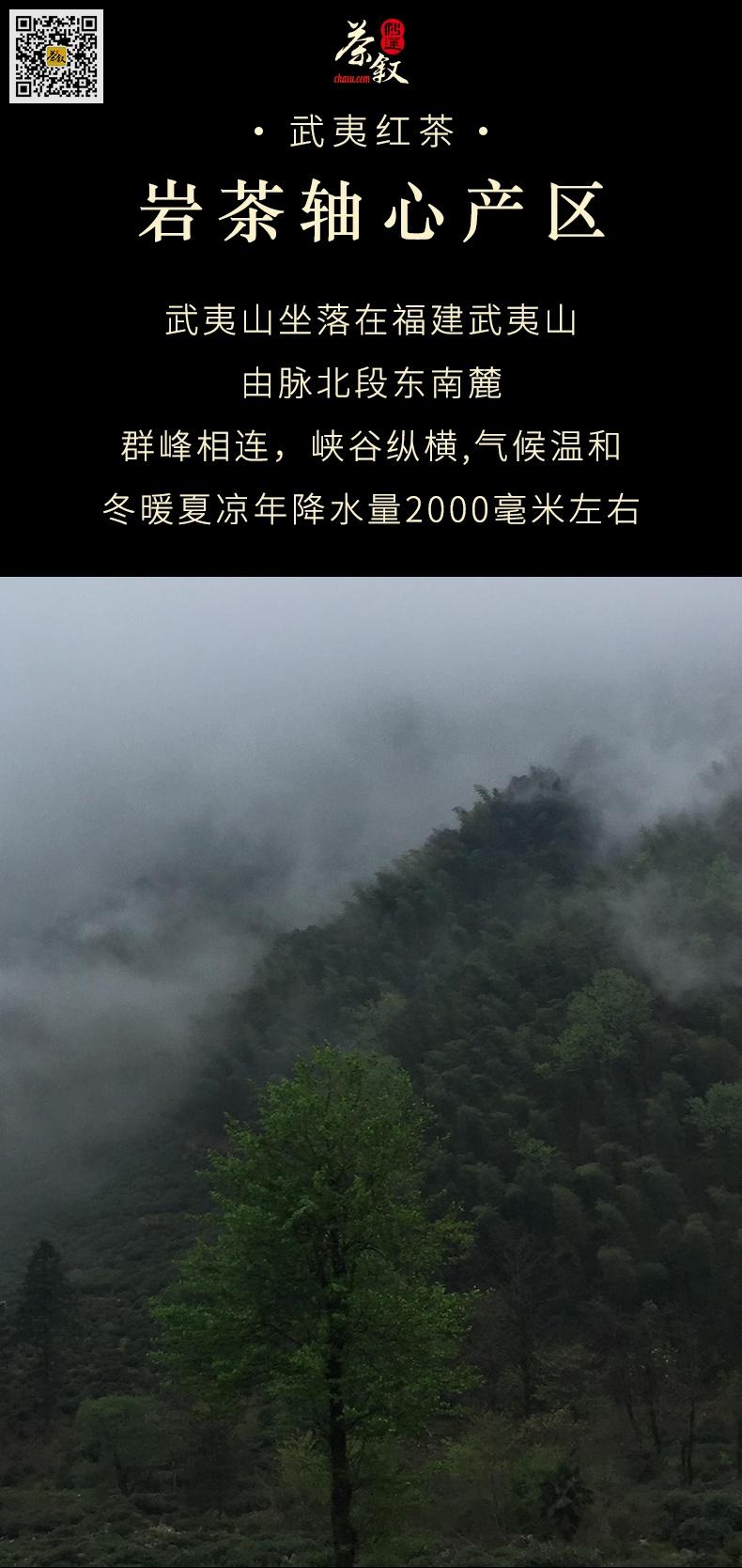 武夷红茶小种红茶产自武夷山本山