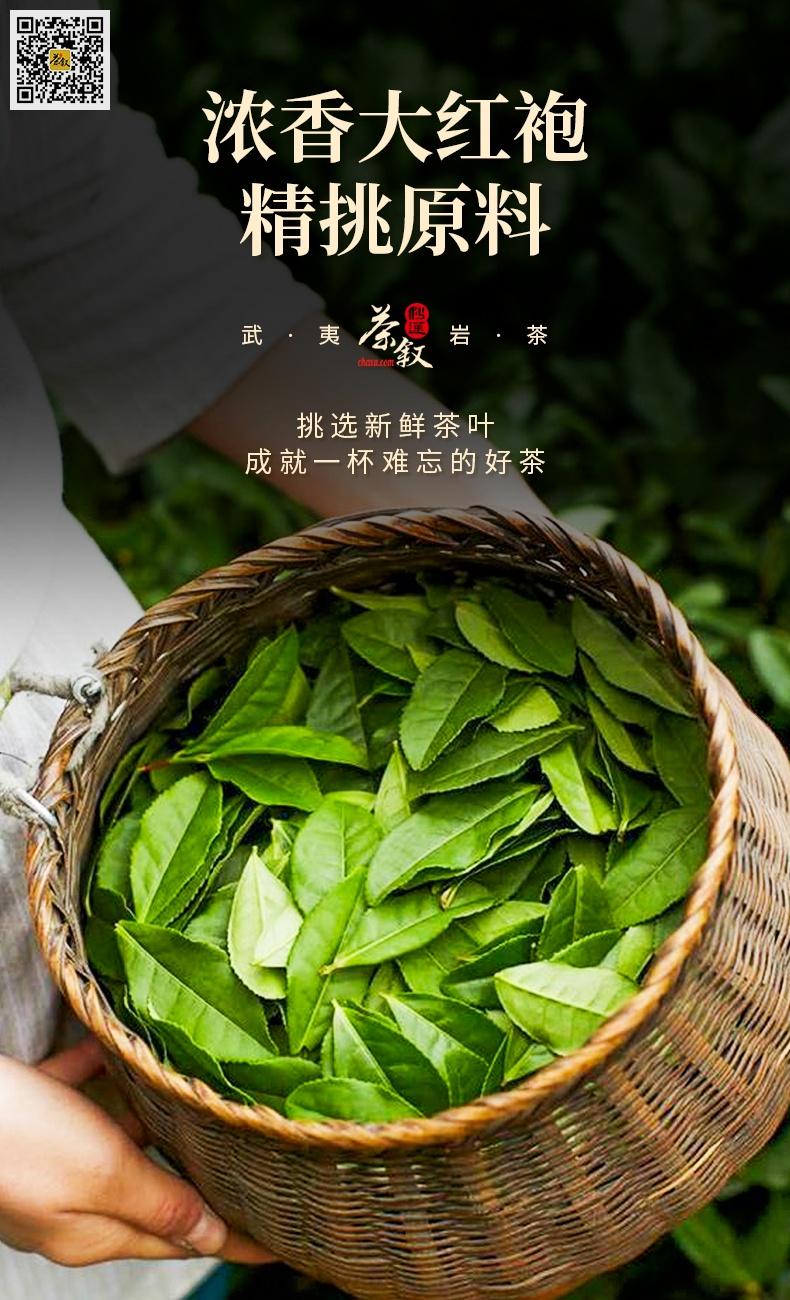 铁罐装散茶浓香大红袍茶青鲜叶特征