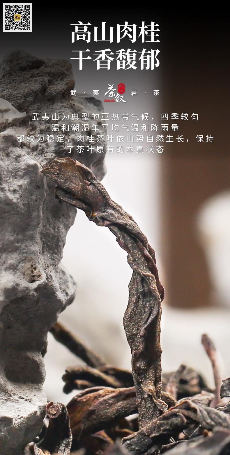 散茶铁罐装高山肉桂干茶条索特征