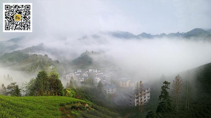 吴三地村烟雾缭绕犹如仙境