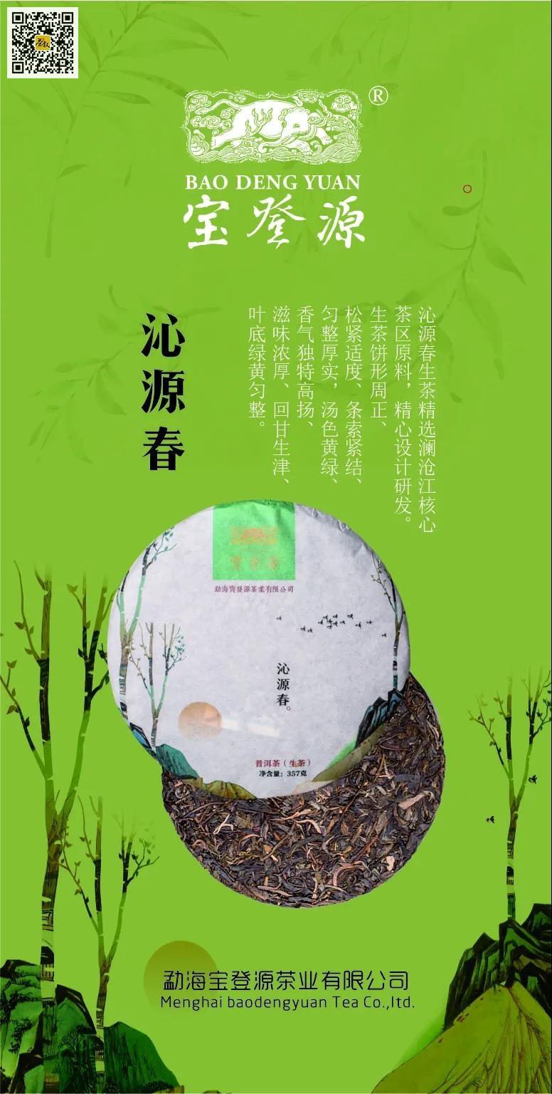 宝登源沁源春生普洱茶